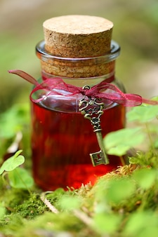 Magic potion. red tincture in a glass bottle with a vintage key in the grass clover.