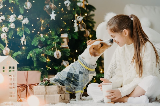 Magic time and domestic atmopshere. happy friendly child and dog kiss, expresses love and care about each other, drinks fresh milk, have rest after decorating christmas tree. children, pets.