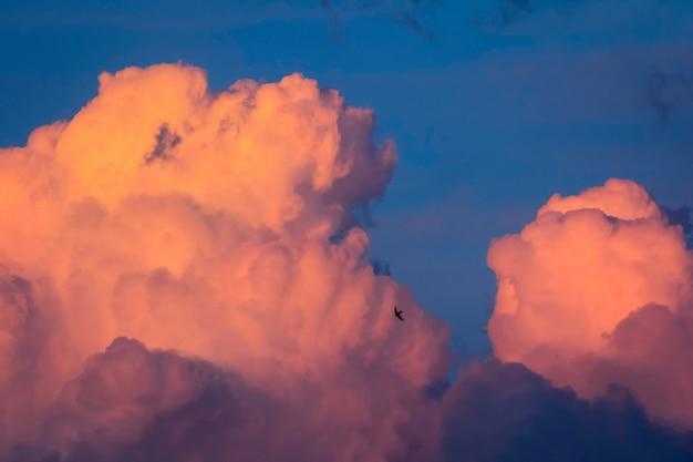 황금 시간 동안 태양에 의해 조명 마법의 저녁 구름. cloudscape, 지평선 없음