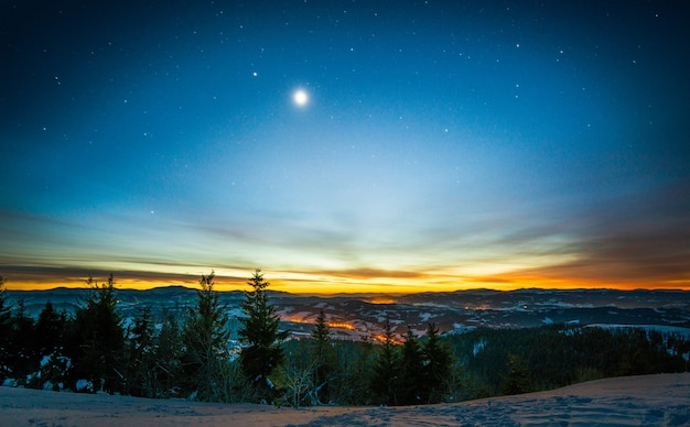 Magical landscape of coniferous forest growing among the hills in winter against a blue starry sky