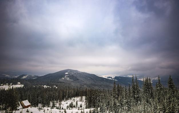 Волшебный пейзаж с елями и холмами и мрачным небом холодным зимним вечером. понятие красивой природы и горнолыжных курортов. copyspace