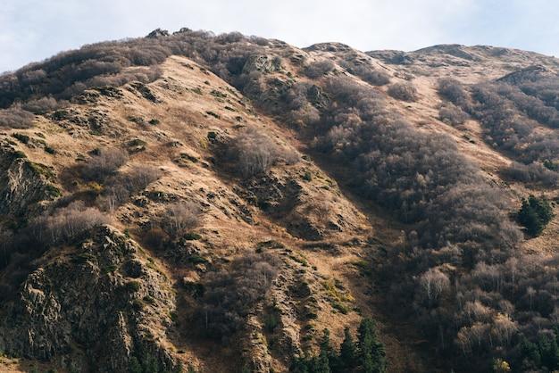 魔法の雄大な自然、植物で覆われた山の斜面、風景