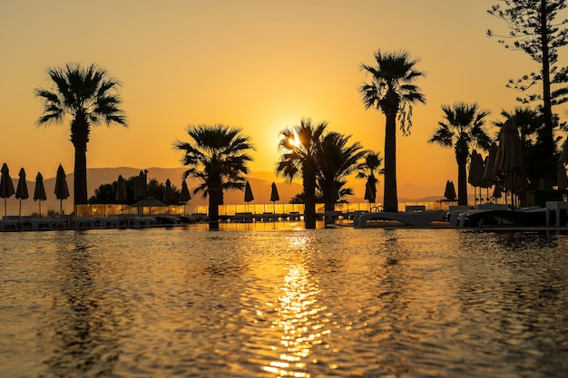 Волшебный восход солнца с кокосовой пальмой и бассейном в роскошном курортном отеле
