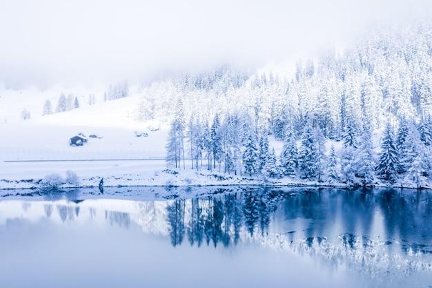눈으로 덮인 숲으로 둘러싸인 알프스의 중심에있는 마법의 스위스 겨울 호수