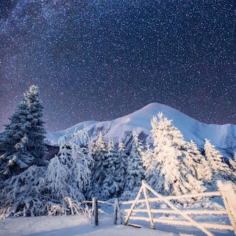 마법의 겨울 풍경