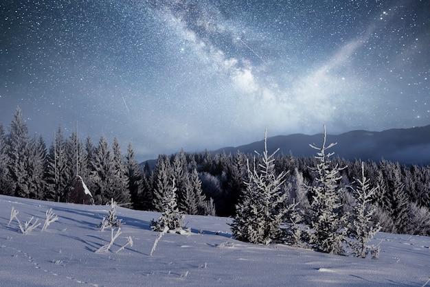 마법의 겨울 눈 덮힌 나무. 겨울 풍경. 별과 성운과 은하계의 활기찬 밤하늘. 깊은 하늘 천체 사진