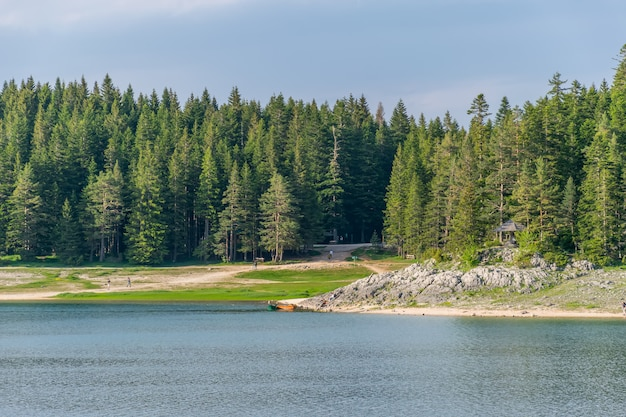 Magnificent black lake is located in the national park durmitor in the north of montenegro.