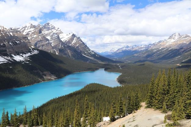 캐나다 밴프 국립공원의 페이토 호수와 눈 덮인 산의 장엄한 전망