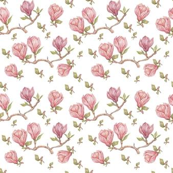 목련 꽃 꽃 밝은 이국적인 수채화 손으로 그린 인쇄 원활한 세트 자연 꽃 가지와 잎 식물 식물학 프리미엄 사진
