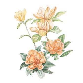 목련 꽃 꽃 밝은 이국적인 수채화 손으로 그린 인쇄 세트 자연 꽃 가지와 잎 식물 식물학 프리미엄 사진