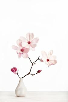 Magnolia soulangeana flower on vase. copy space