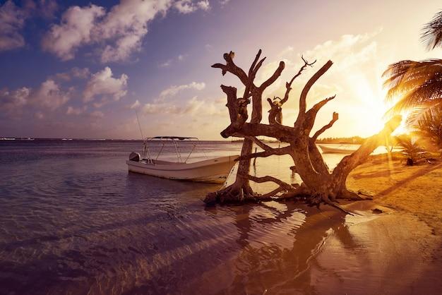 Mahahual карибский пляж в коста-майя