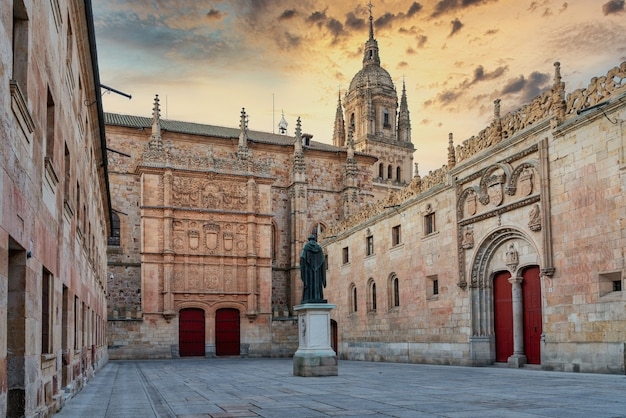 Main facade of the university of salamanca in spain where is the frog