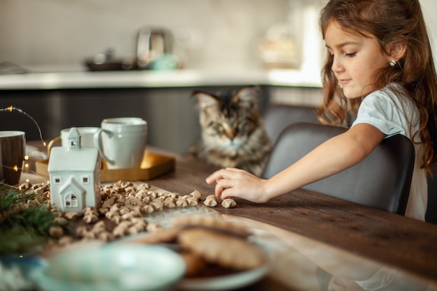 Maine coon cat and a cute girl are sitting at the table next to the christmas decor. the concept of