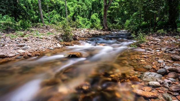 日光、パノラマの荒野、朝の湿った天国の新鮮さを備えた熱帯雨林の雄大な深い滝の流れの動き、野生の自然林へのハイキング