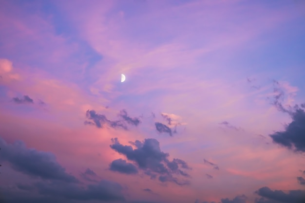 Majestic dusk twilight in the evening with gentle sunlight abstract nature background pink purple li...