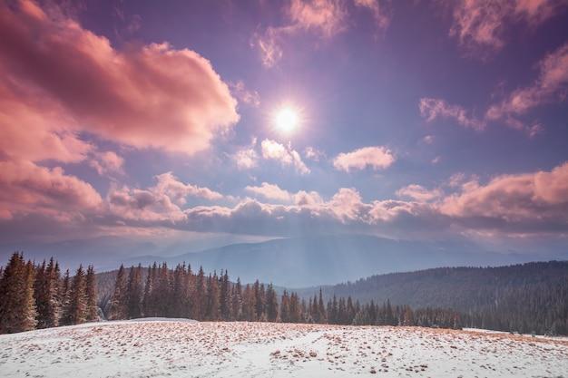 日没の山の谷の雄大な森ドラマチックで絵のように美しい朝のシーンカルパティア山脈ウクライナ