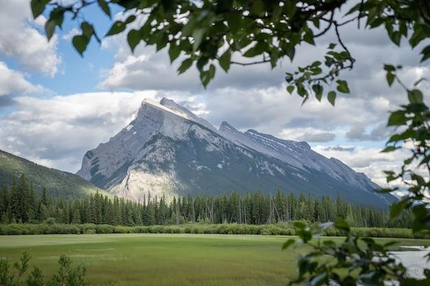 나뭇가지로 둘러싸인 장엄한 산 런들 밴프 국립공원 캐나다