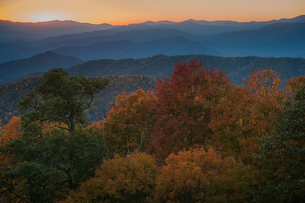 Colpo maestoso di una catena montuosa densamente boscosa nel parco nazionale delle great smoky mountains