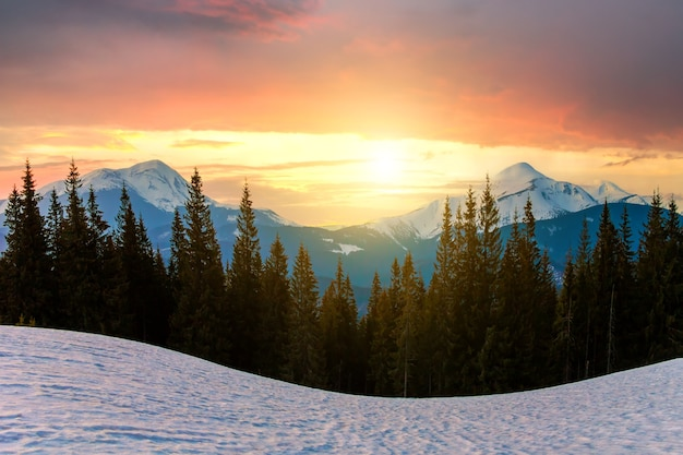 Majestic view of carpathian mountains at sunset. valley covered with clean snow,