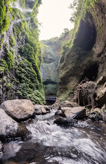 Majestic waterfall flowing on rocky cliff in tropical rainforest