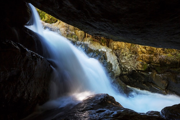 Величественный водопад в джунглях тропических лесов коста-рики. тропический поход.
