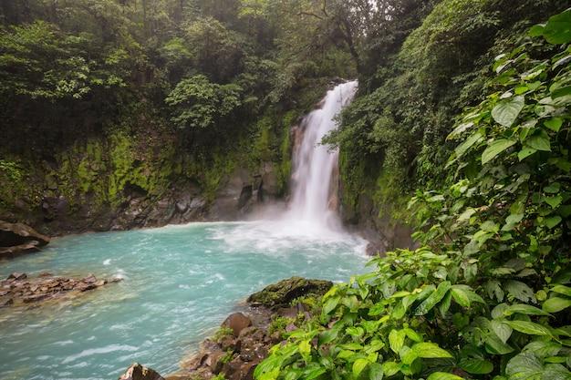 コスタリカの熱帯雨林のジャングルにある雄大な滝。熱帯のハイキング。