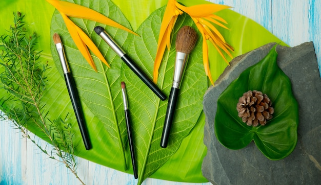 Makeup brushes on leaf