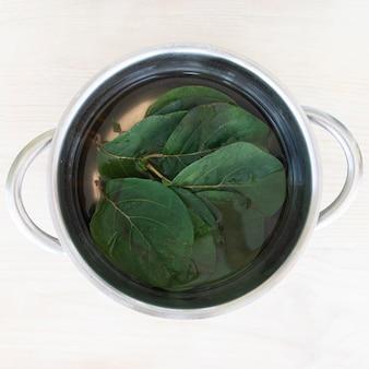 Изготовление зеленого пигмента с листьями