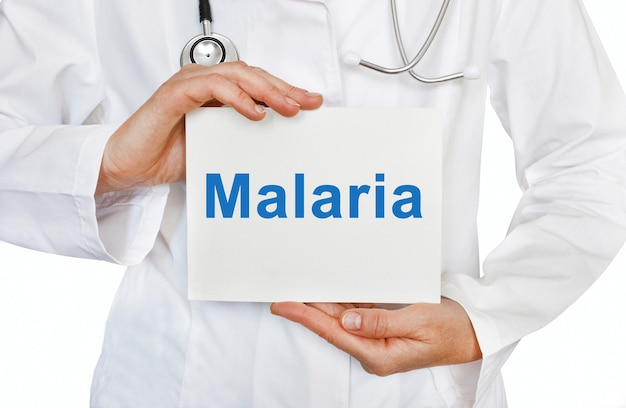 Malaria card in hands of medical doctor