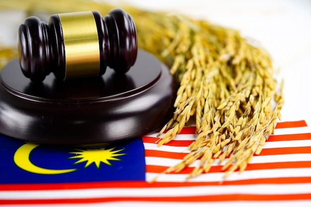 Malaysia flag and judge hammer with gold grain. law and justice court concept.