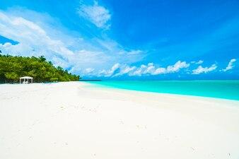 モルディブ島
