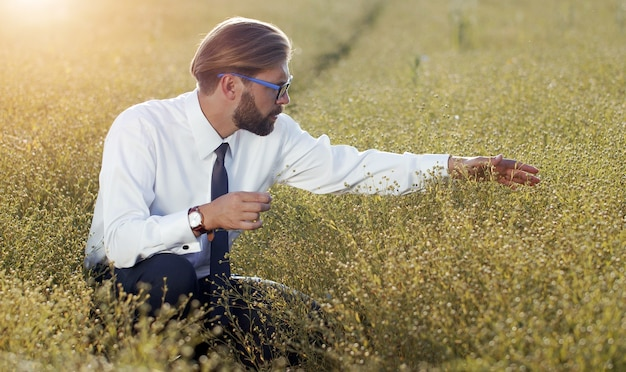 収穫前に作物を調べる男性農民