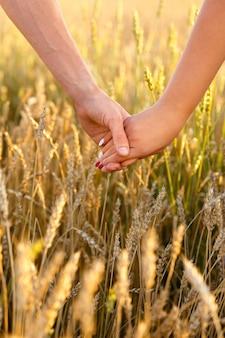 男性と女性の手が麦畑でお互いを保持します