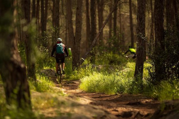 남자 선수 mountainbiker 숲 오솔길을 따라 자전거를 탄다. 사이클링 mtb 엔듀로 흐름 트레일 트랙. 야외 스포츠 활동