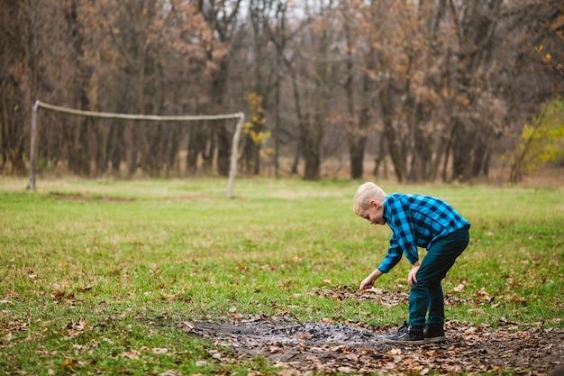 乾燥した落ち葉で木の小枝と火の灰で遊んで秋の森を散歩中の男性の子供、好奇心が強いアクティブな子供時代の概念
