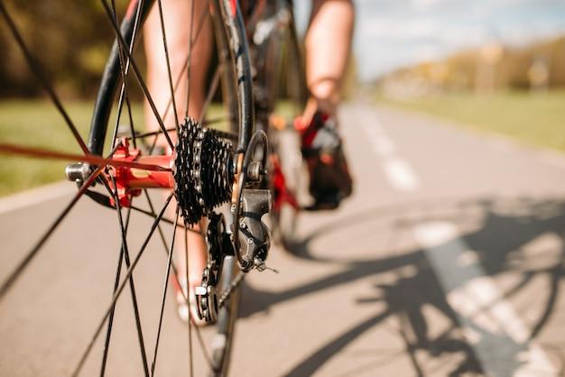 自転車道の男性サイクリスト、後輪からの眺め。アスファルト道路でサイクリング。