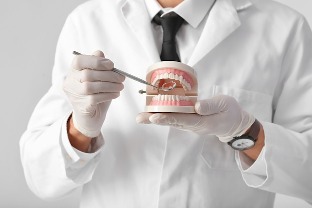 Male dentist with plastic jaw model on light surface, closeup