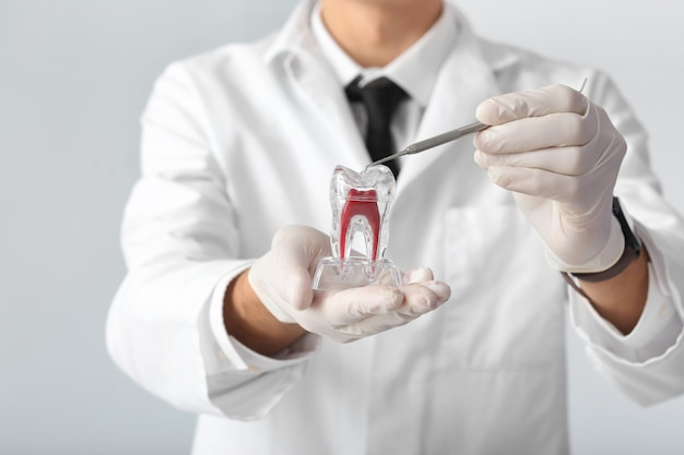 Male dentist with plastic tooth on light surface, closeup