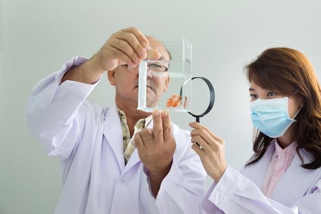 Мужской доктор, держащий бак для рыбы и женский доктор, выглядит больной рыбой через увеличительное стекло