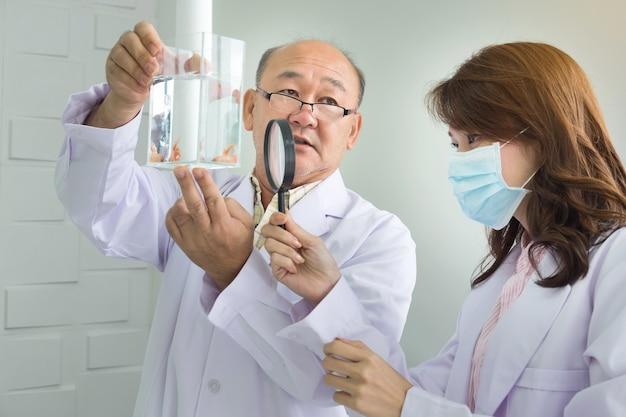Мужской доктор, держащий бак для рыбы и женщина-врач, глядя рыбу через увеличительное стекло