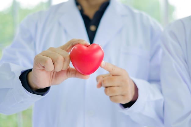 Male doctor holding red heart model and finger point.