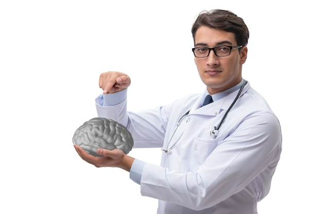 Male doctor with the brain isolated on white