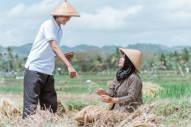 The male farmer uses the tablet with a finger gesture to point at the rice harvested together in the rice field during the da