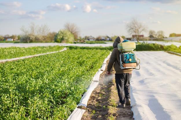분무기를 가진 남성 농부는 화학 물질로 감자 덤불을 처리합니다. 곤충 및 곰팡이 감염으로부터 재배 식물 보호