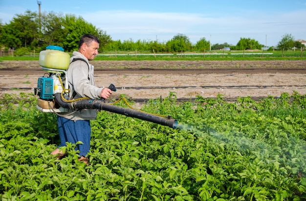 Male farmer with a mist sprayer processes potato bushes with chemicals control of use of chemicals