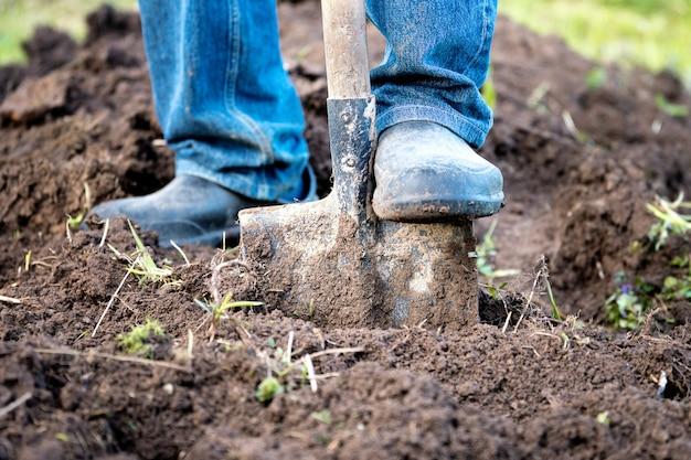 ゴム長靴の男性の足が庭の古いシャベルで庭のベッドを掘る
