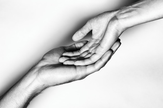 Male and female hands together. the black and white picture