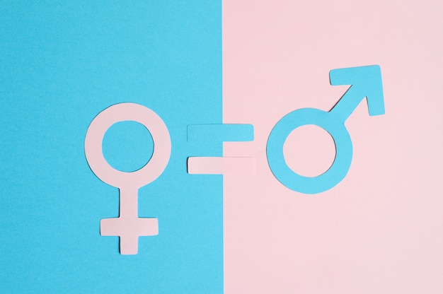 Male and female symbols cut out of paper and an equal sign on a pink and blue paper