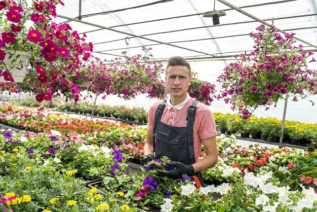 Male gardener is taking care of plants while gardening flowers in greenhouse. lifestyle